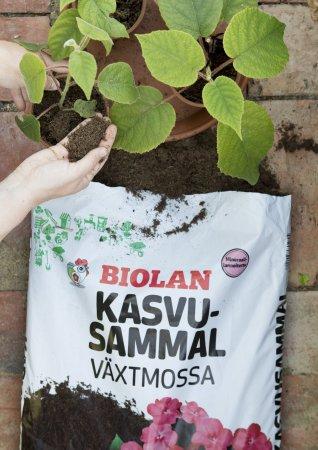 Biolan Kasvusammal