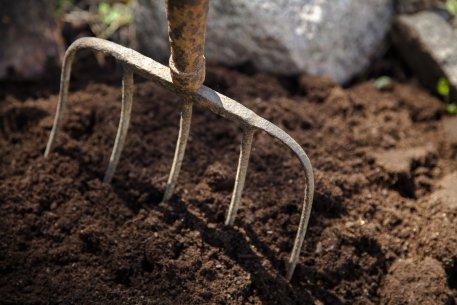 Biolan Торф для улучшения почвы