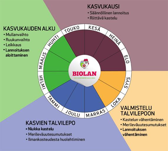 Biolan huonekasvien hoitokalenterista löydät ohjeet hoitotoimenpiteille eri vuodenaikoina.