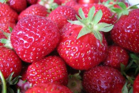 Biolan Marja- ja hedelmälannoite