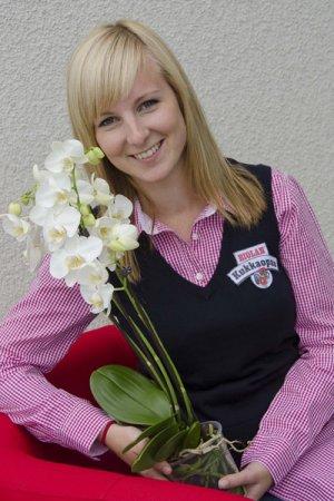 Biolan Удобрение для орхидей RAIN MIX